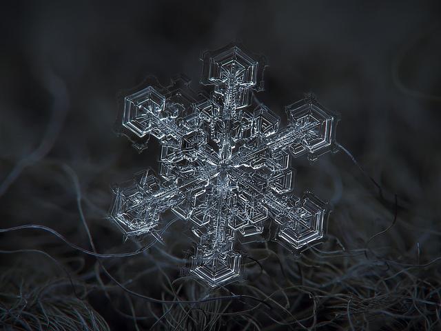 snowflake1