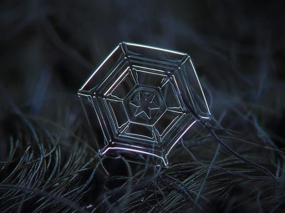 snowflake4