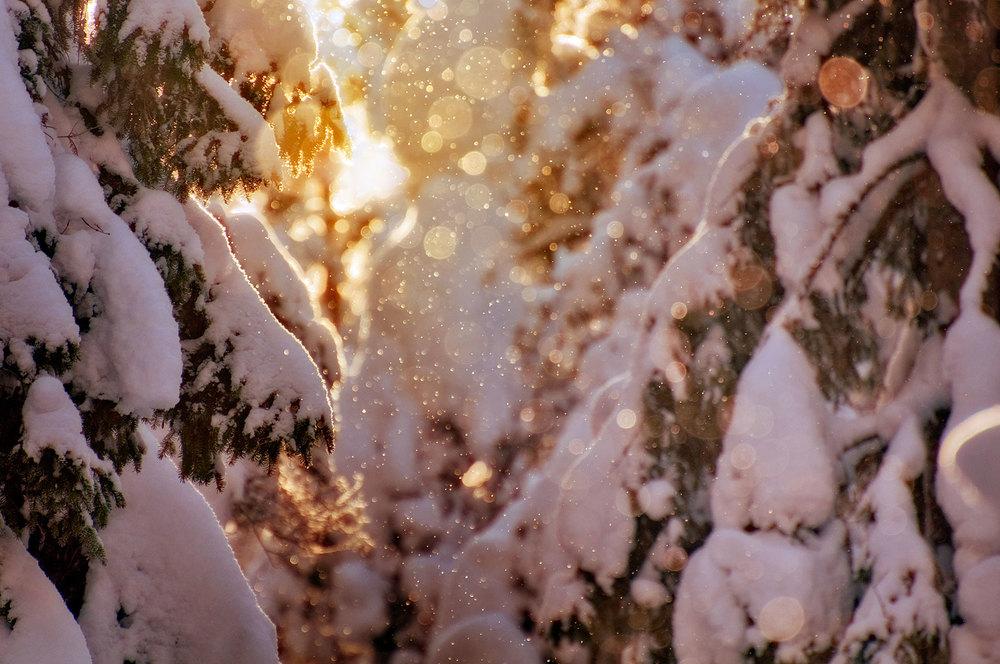 winter010