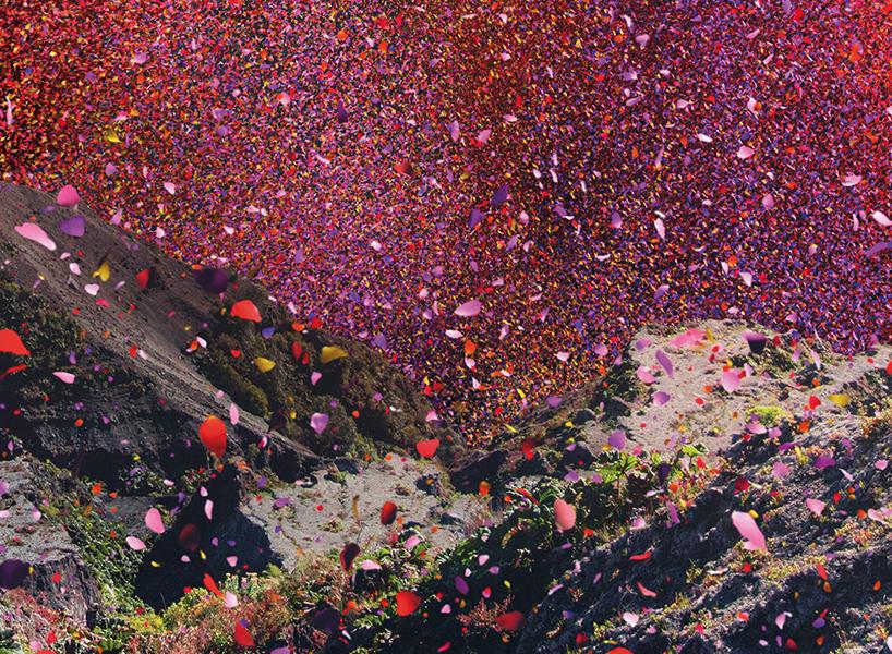 volcanoflowers2